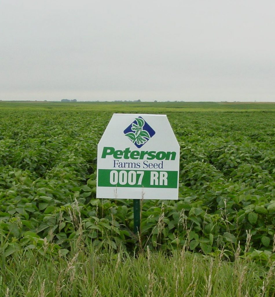 Before RR2Y was an introduced, one of the first RR varieties available in 2000 from Peterson Farms Seed.