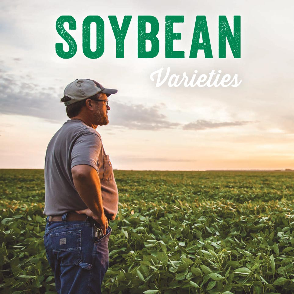 Soybean Varieties