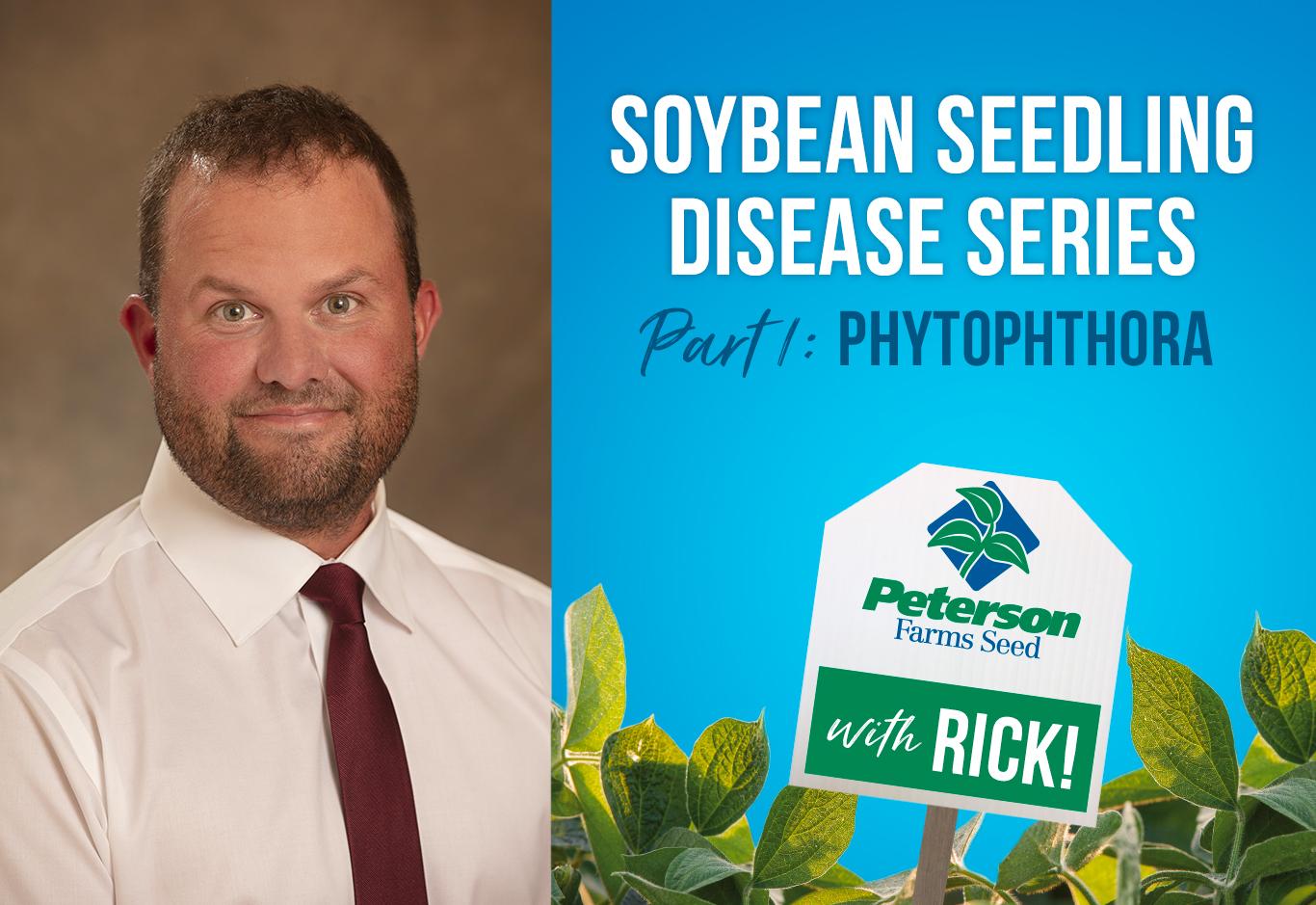 Phytophthora Soybean Seedling Disease